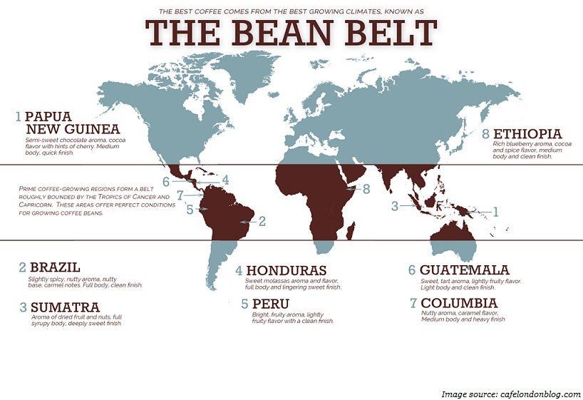 coffee the bean belt