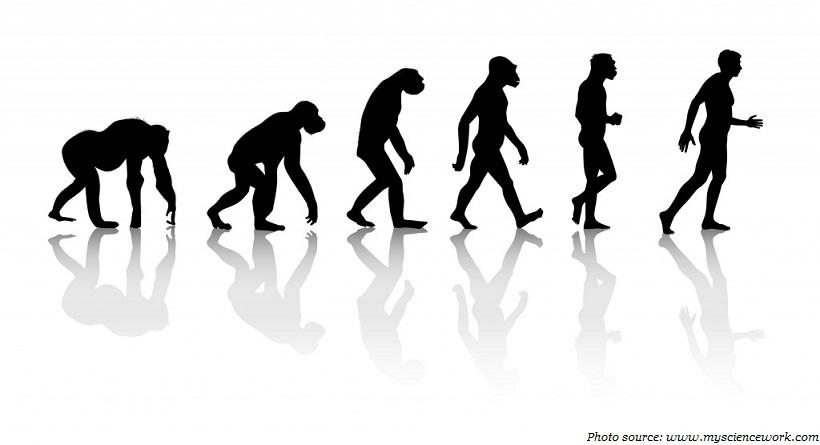 darwinian theory