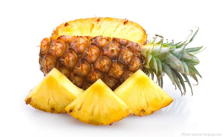 Interesting Facts About Pineapples Just Fun Facts