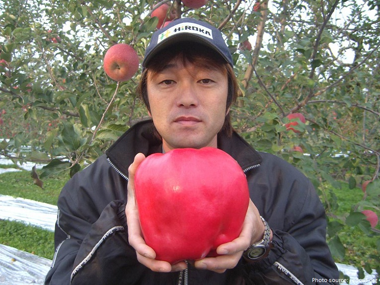 the largest apple ever