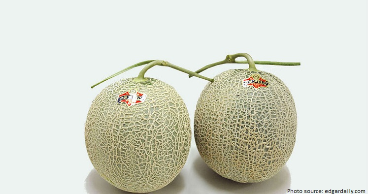the worlds most expensive melon