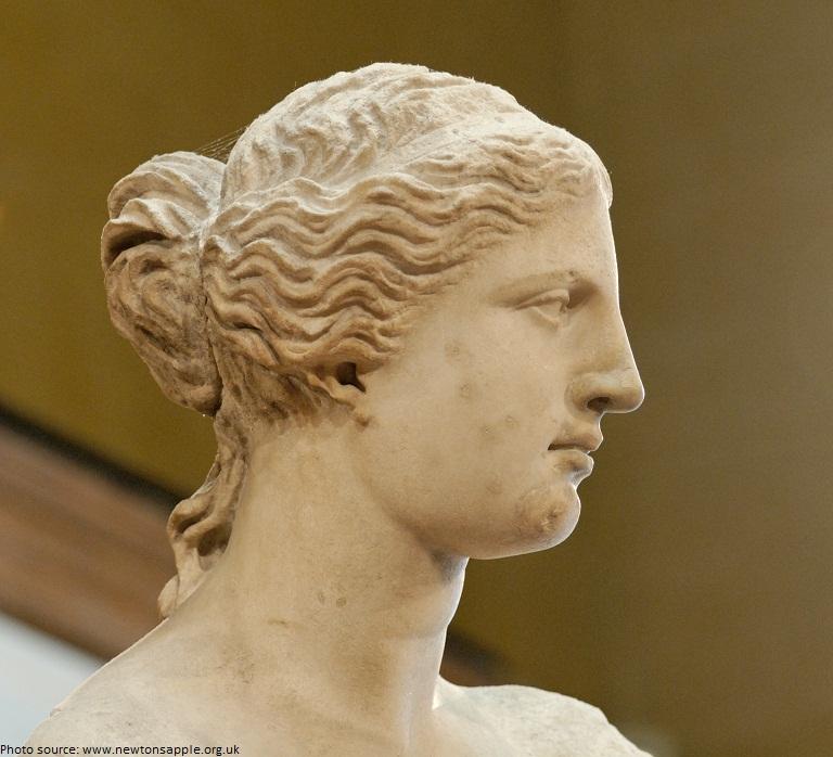 Venus de Milo head