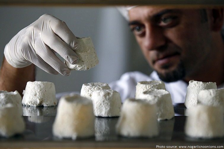 donkey cheese pule the most expensive cheese in the world