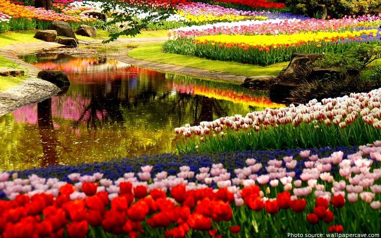 keukenhof-garden-holland