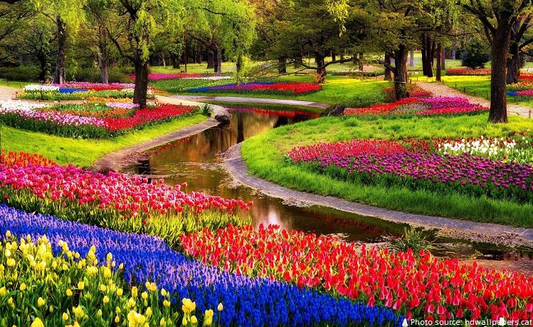 Keukenhof , also known as the Garden of Europe , is flower garden It
