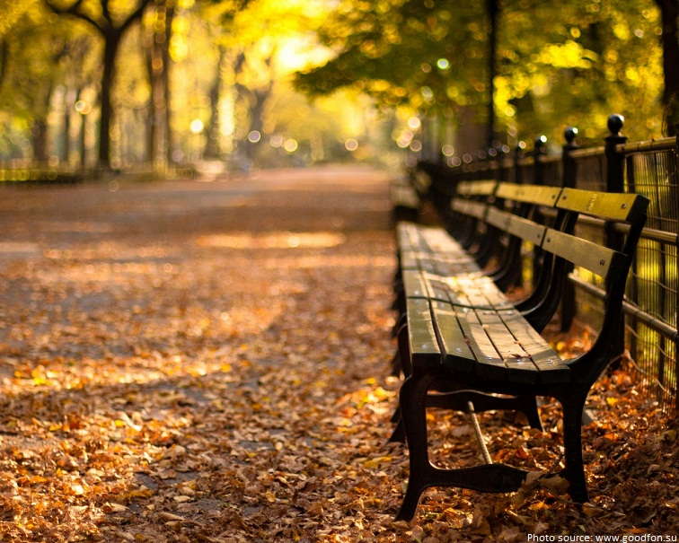 Interesting Facts About Central Park Just Fun Facts