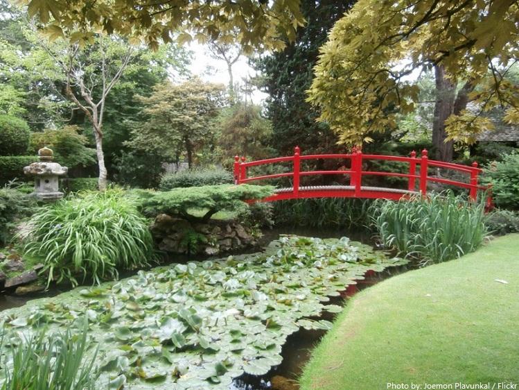 irish national studs japanese gardens