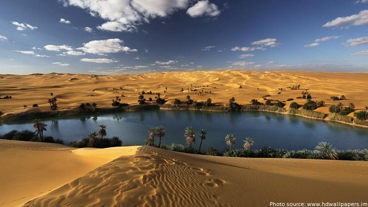 sahara desert oasis