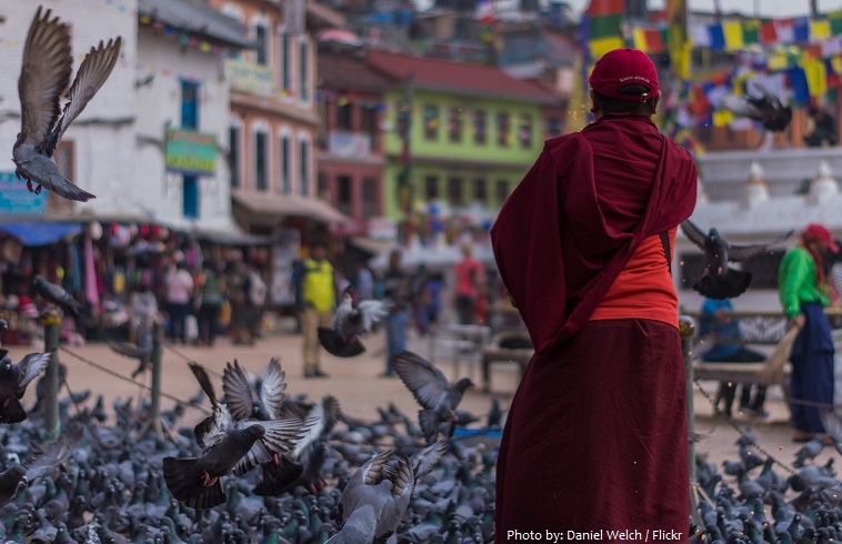 boudhanath monk feeding birds