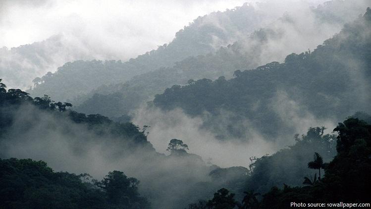 costa rica cloud forest reserve monteverde