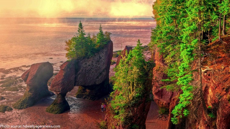 bay-of-fundy-2