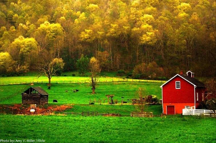 appalachian mountains farm