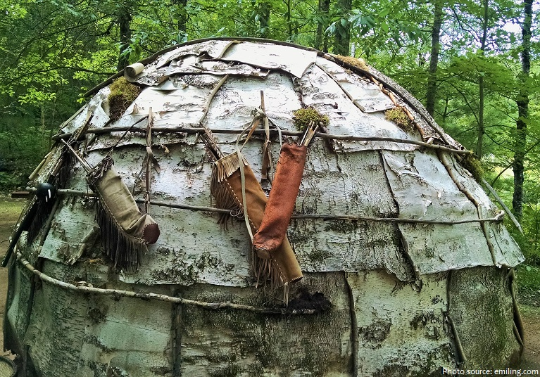 birch wigwam