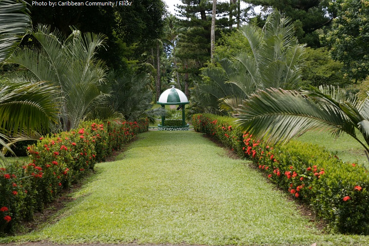 st vincent and the grenadines botanic gardens