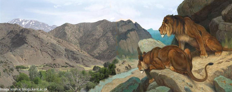 atlas mountains Lions