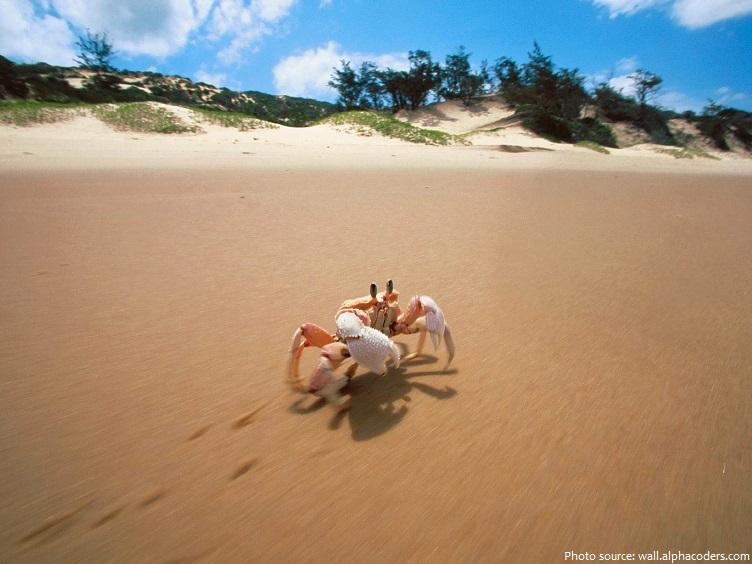 crab walk sideways