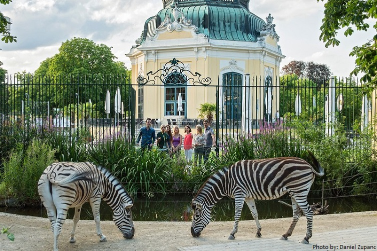 schönbrunn palace zoo