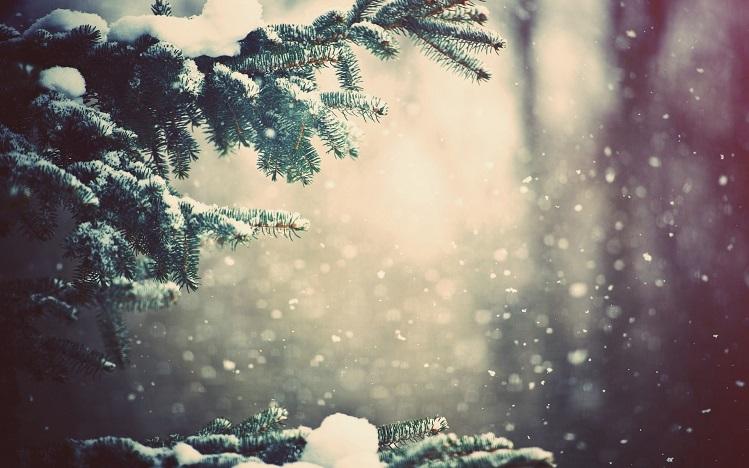 snow-falling-2