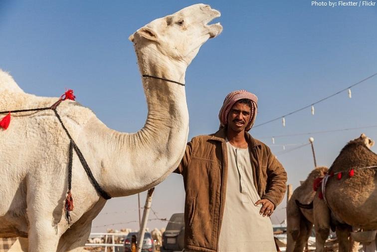 riyadh camel market