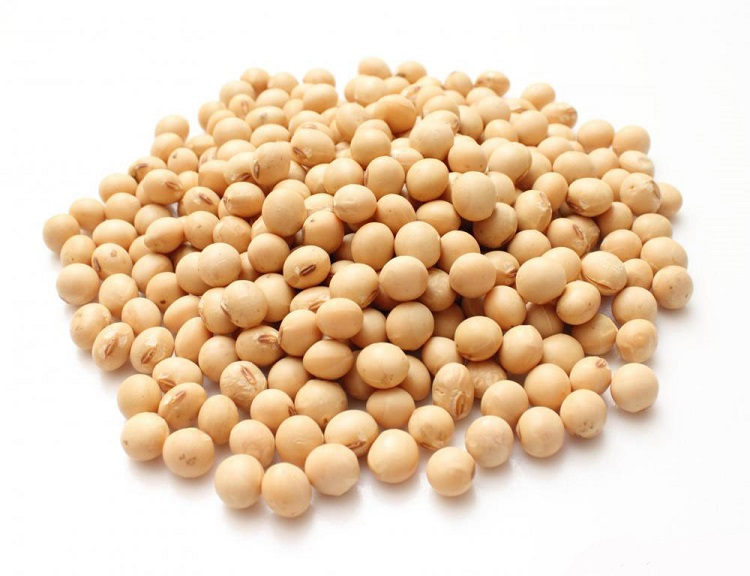 soybeans-3