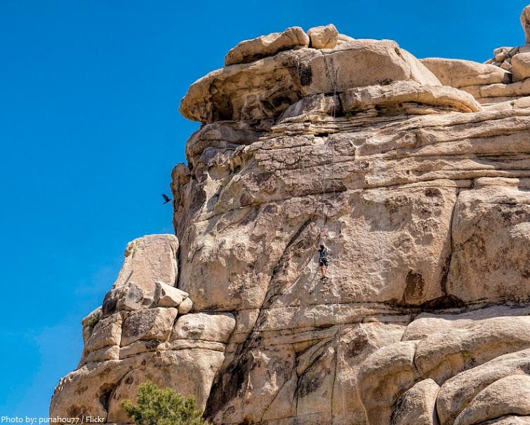 joshua tree national park climber
