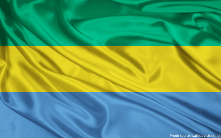 Interesting facts about gabon just fun facts gabon flag sciox Gallery