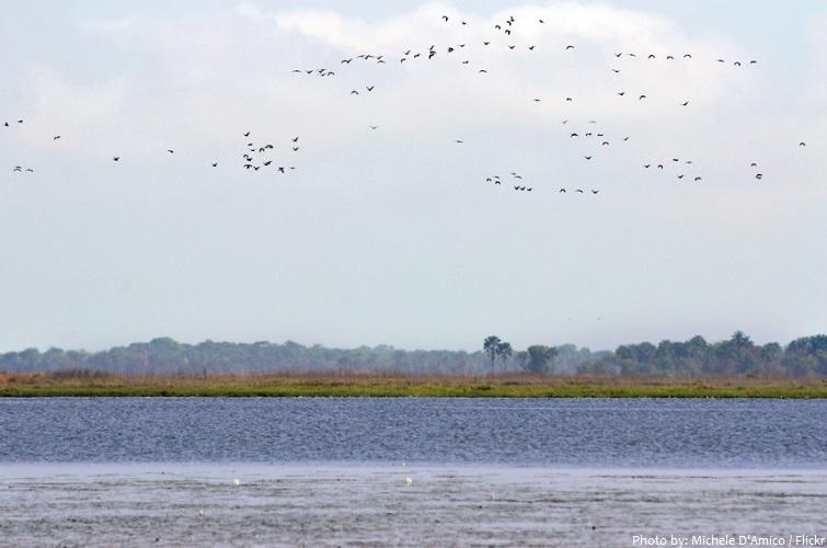 lagoas de cufada natural park