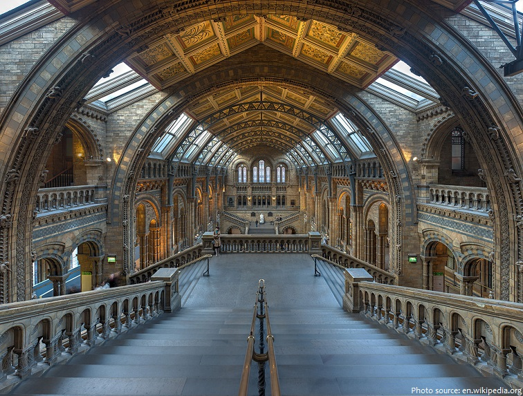 natural history museum london main hall