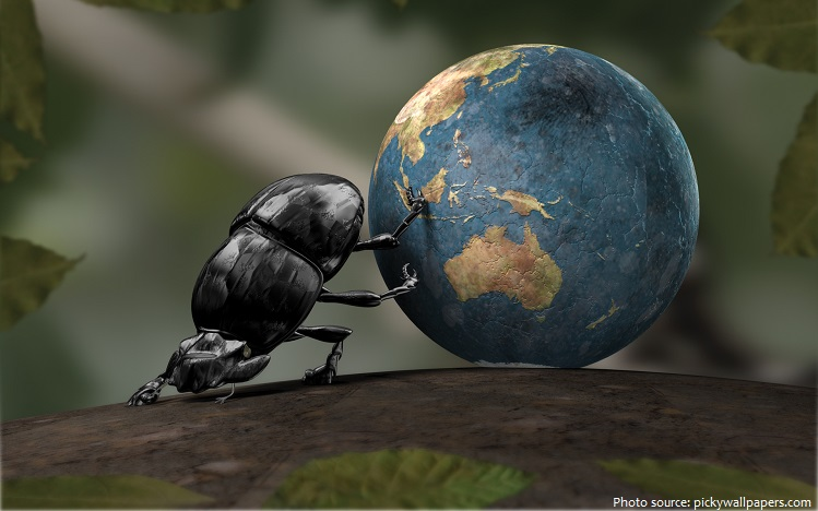 dung beetle rolls the earth