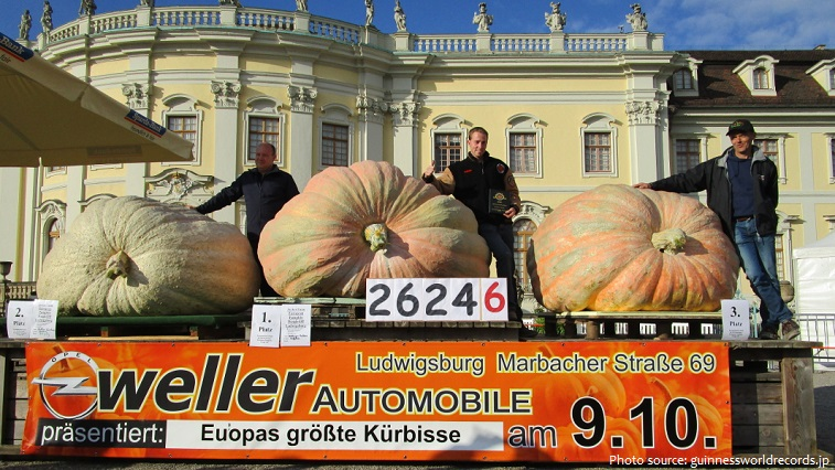 the heaviest pumpkin in the world