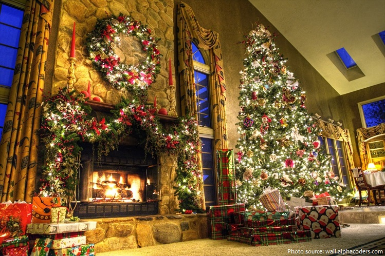 Interesting Facts About Christmas.Interesting Facts About Christmas Trees Just Fun Facts