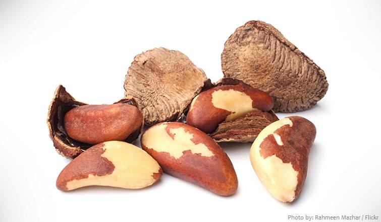 brazil-nuts-2