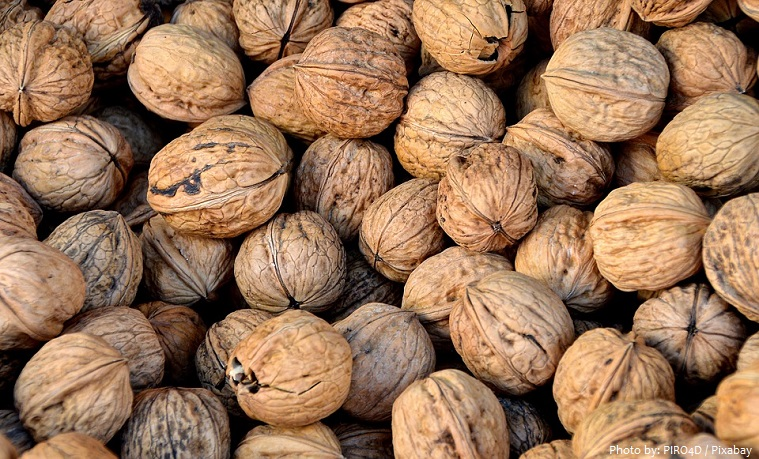 walnuts-3