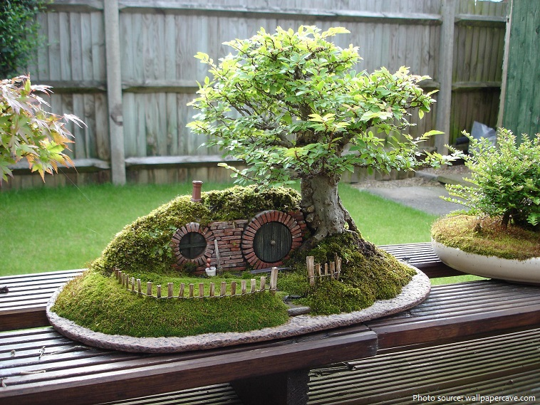 lord of the rings bonsai