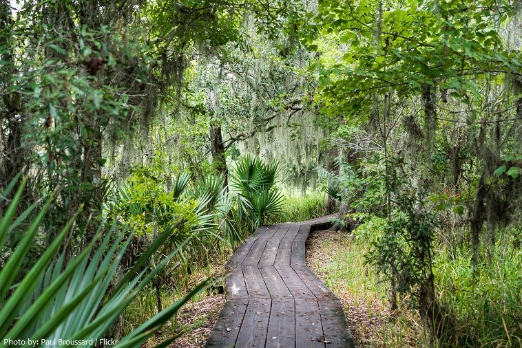 jean lafitte national historical park and preserve