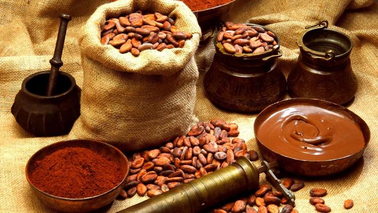 cocoa-beans-2