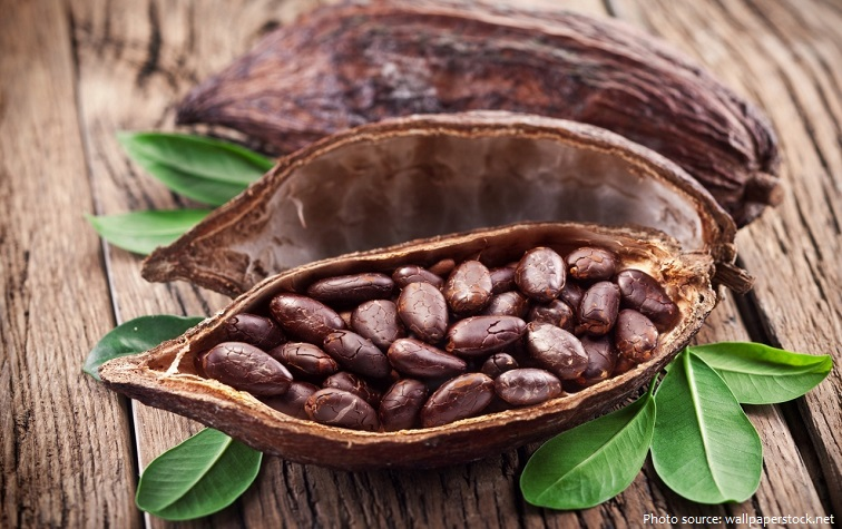 cocoa-beans-3