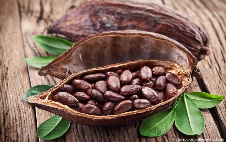 cocoa-beans-3
