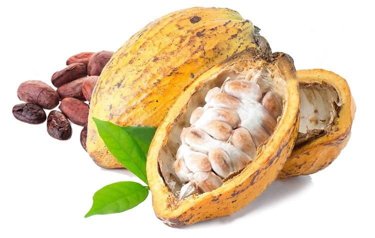 cocoa-beans-4