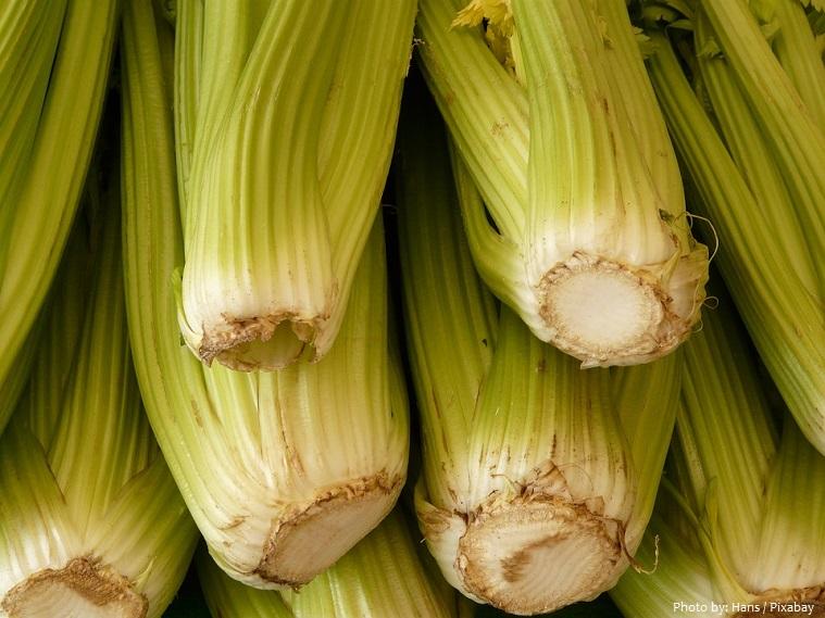 celery-4