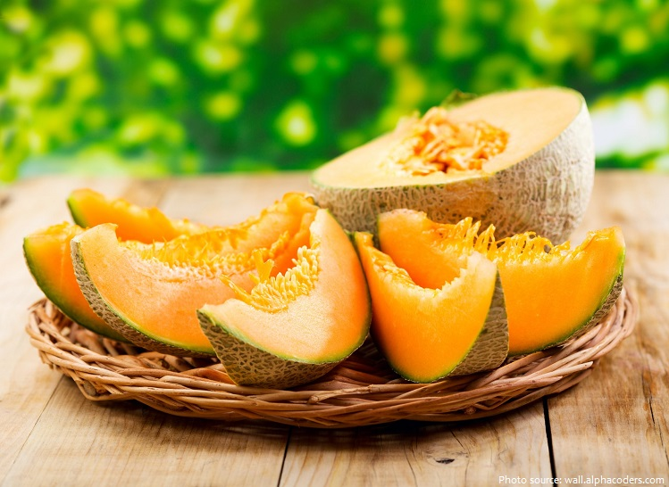 Interesting Facts About Cantaloupe Just Fun Facts Cantaloupe, cucumis melo is vitamin c and a rich fruit which prevent cancer, strengthen immunity, lower anxiety and stress and support digestive health. just fun facts