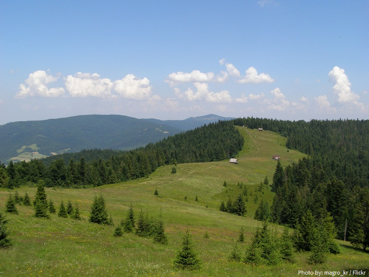 carpathian-mountains-3