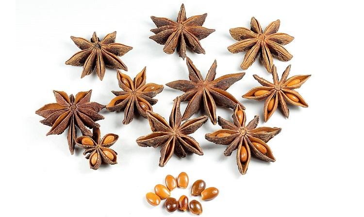 star-anise-2
