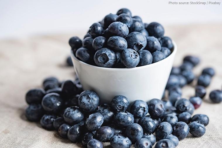 bilberries-5