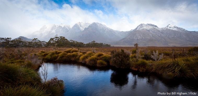 tasmania nature