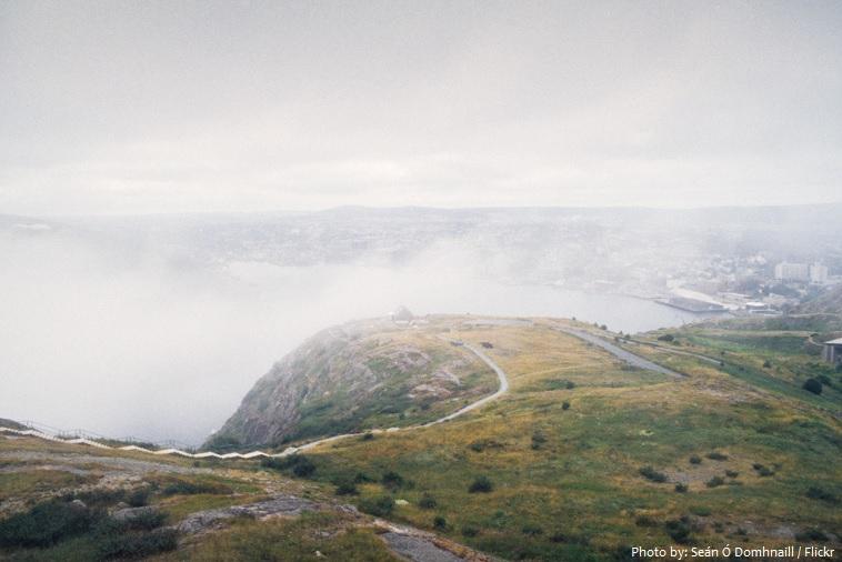 fog newfoundland