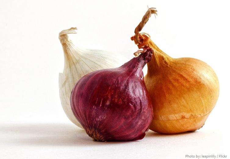 onions-3