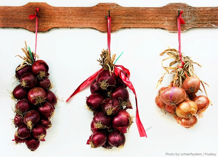 onions-5