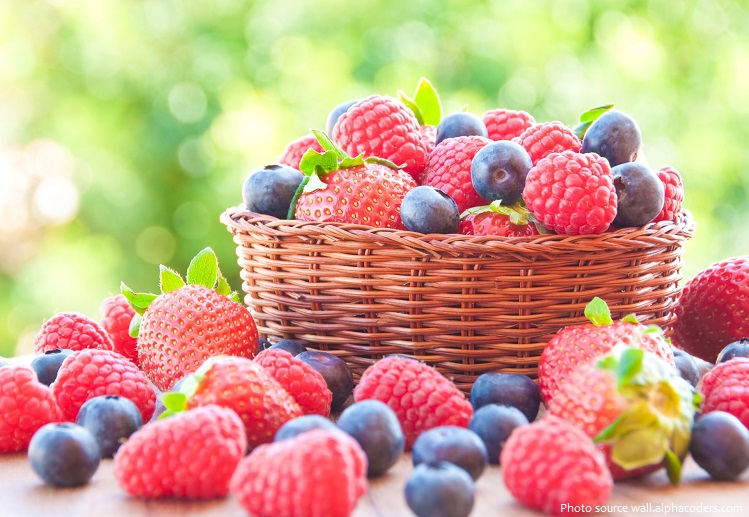 Interesting facts about berries | Just Fun Facts