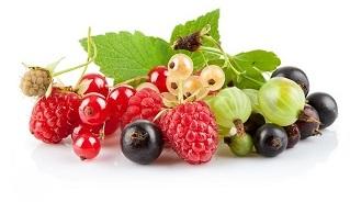 berries-7